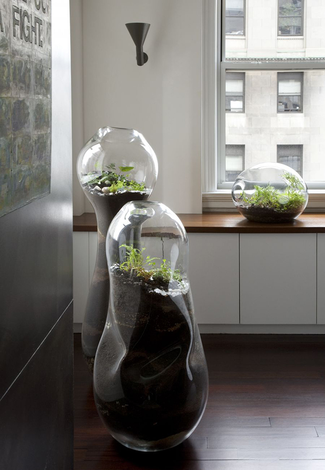 Giant-and-Living-Terrariums-by-Paula-Hayes-11