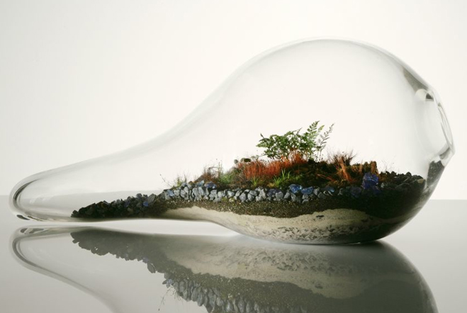 Giant-and-Living-Terrariums-by-Paula-Hayes-5