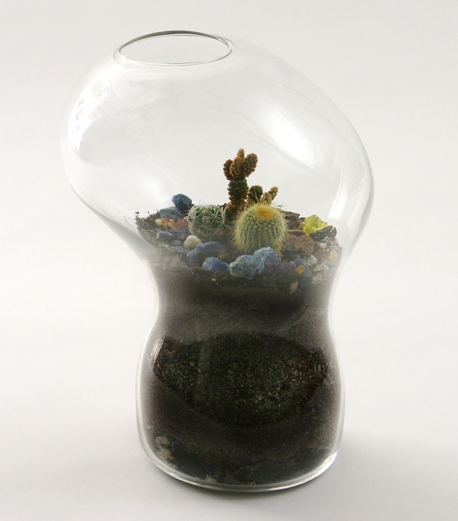 Giant-and-Living-Terrariums-by-Paula-Hayes-9