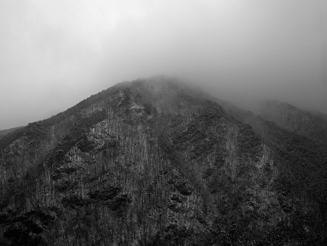Articulating-the-Unseen-World---Nature-by-South-Korean-Photographer-Boomoon-4