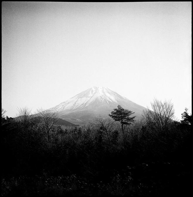 Japan-Captured-by-Sean-Wood-1
