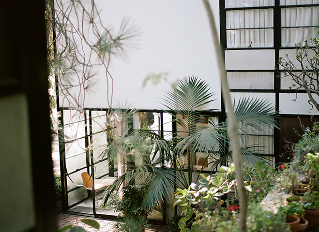 Eames-House-&-LA-Architecture-by-Mark-Robinson-9
