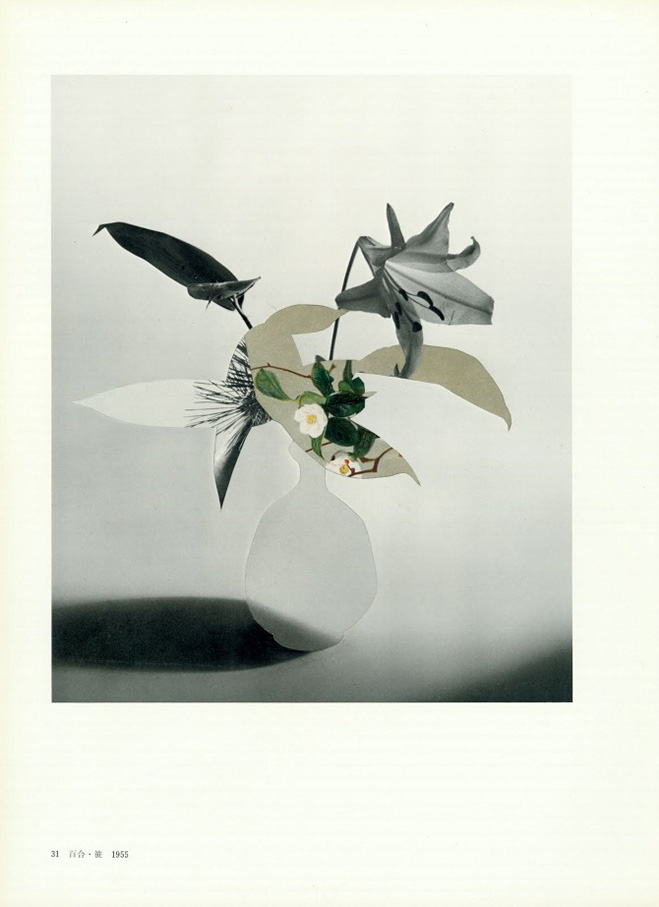 Ikebana On Paper Verso Collages By American Artist Leigh